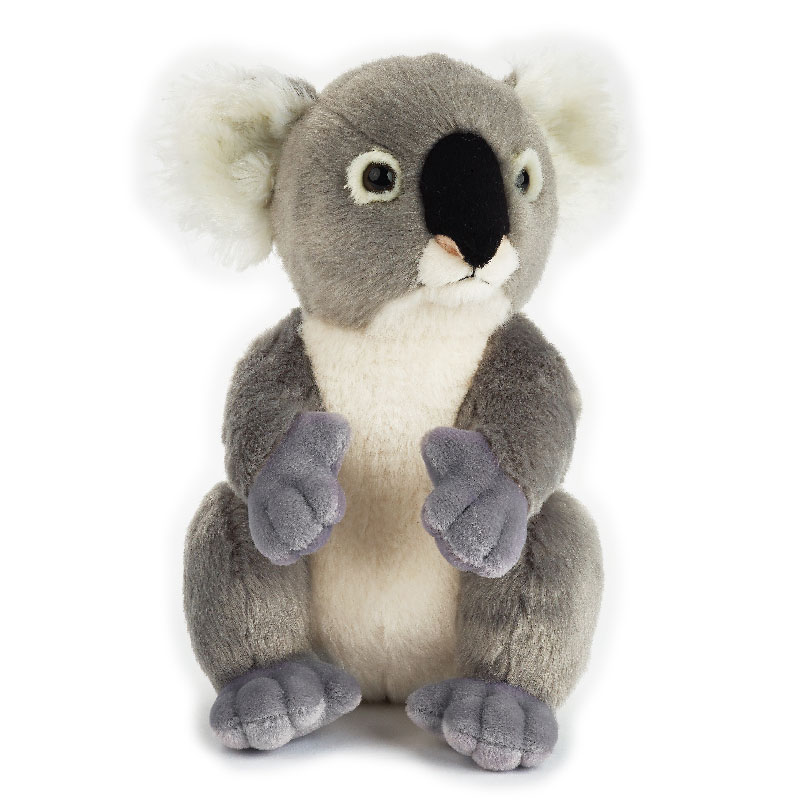 Lelly Peluche Online Store | Peluche Koala National Geographic